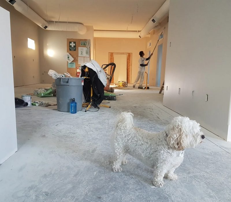 Renovating the Old House- Does it Cost Too much or Just a Myth